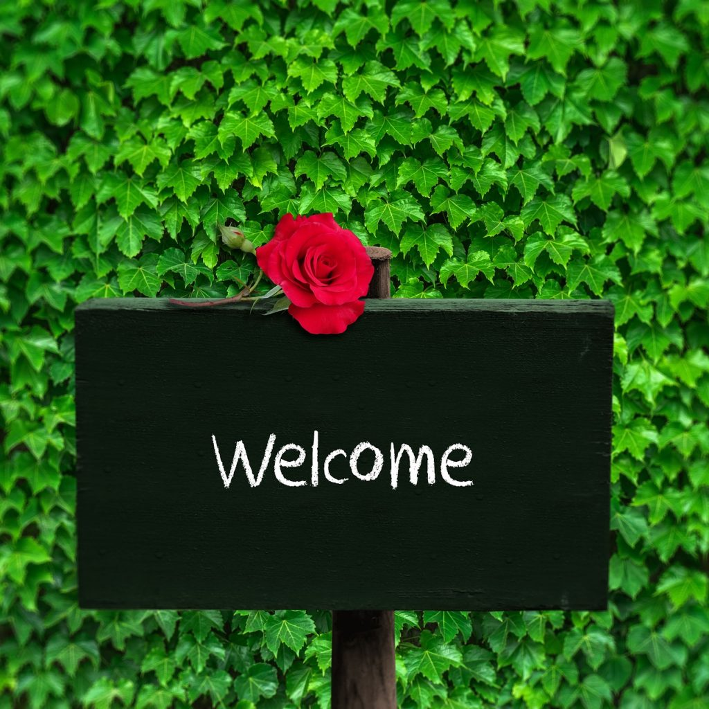 Welcome with red rose and green background